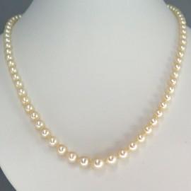 Collier de perles Akoya Diane 284