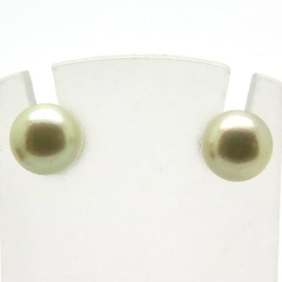 Perles blanches du Japon pour oreilles percées 220 Jussieu