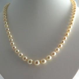 Collier de perles de culture blanches 304 – Jardin du Luxembourg